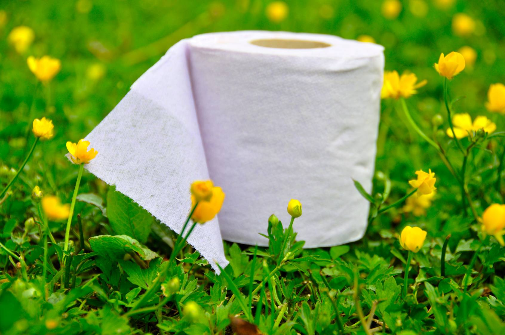 Biologic Active Tissue Paper BBA Biotech Toilet Paper Biologically